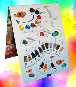 Miscellanea Colori della natura